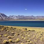 Laguna Miñiques y Miscanti: